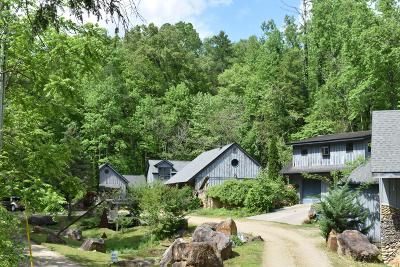 Gatlinburg Commercial For Sale: 252 Buckhorn Rd