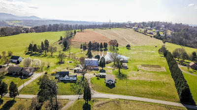 Blount County Single Family Home For Sale: 801 Bert Garner Lane