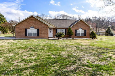 Blount County Single Family Home For Sale: 824 Alley Dr. Drive