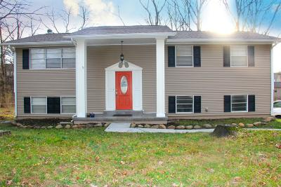 Knoxville Single Family Home For Sale: 2305 Black Bear Rd