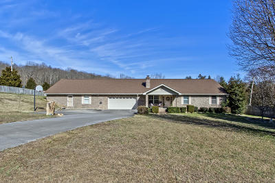 Loudon County Single Family Home For Sale: 3002 Williams Ferry Rd