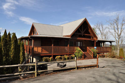 Sevierville Single Family Home For Sale: 2986 Mountain Memories Way