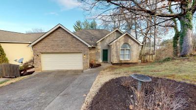 Knoxville Single Family Home For Sale: 8501 Old Towne Court