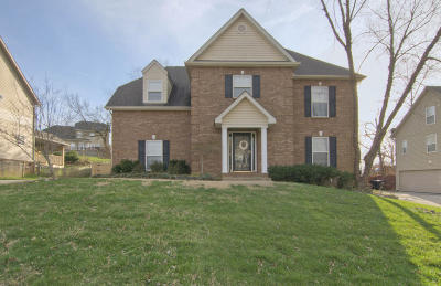 Knoxville Single Family Home For Sale: 12541 Coral Reef Circle