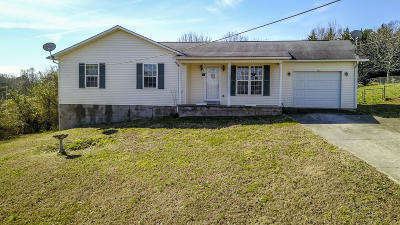 Anderson County Single Family Home For Sale: 155 Pleasant View Loop