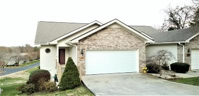 Loudon Single Family Home For Sale: 105 Poteau Trace