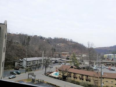 Gatlinburg Condo/Townhouse For Sale: 306 Baskins Creek Rd #Unit 608
