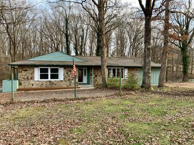 Loudon County Single Family Home For Sale: 20120 Fork Creek Rd