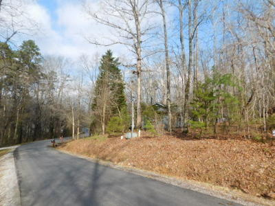 Residential Lots & Land For Sale: 213 Oostanali Way