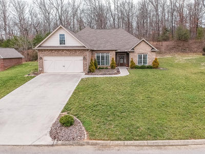 Single Family Home For Sale: 954 Old Hickory Lane