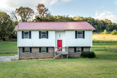 Sweetwater Single Family Home For Sale: 4015 Sweetwater Vonore Rd