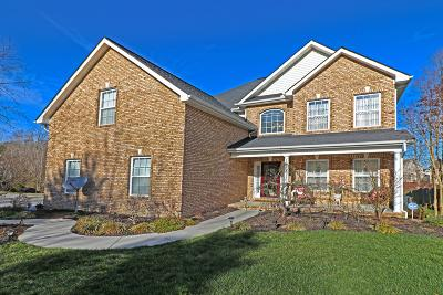 Knoxville Single Family Home For Sale: 5918 Rhyne Cove Lane