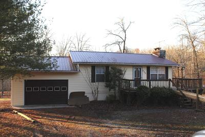 Sevierville Single Family Home For Sale: 835 Ailey Church Lane