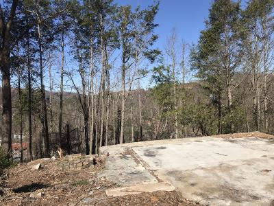 Sevier County Residential Lots & Land For Sale: 341 Silverbell Heights Lane
