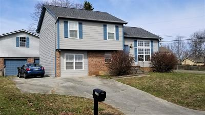Knoxville Single Family Home For Sale: 6001 Autumn Oaks Lane