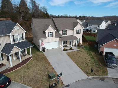 Knoxville Single Family Home For Sale: 6569 Painter Farm Lane
