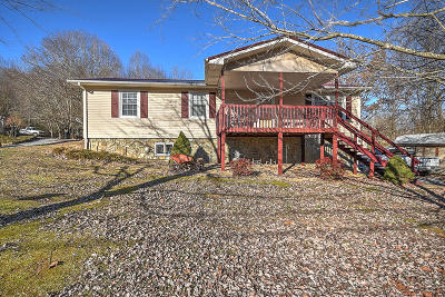 Rogersville Single Family Home For Sale: 306 Holston Terrace Drive