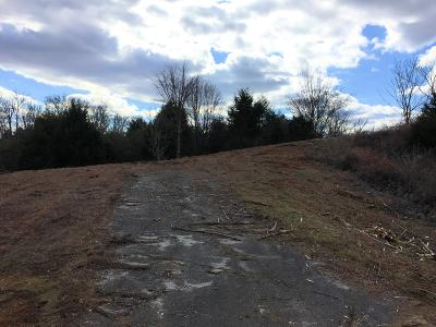 Lenoir City Residential Lots & Land For Sale: 24086 S Highway 321