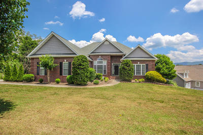 Maryville Single Family Home For Sale: 1508 Mint Meadows Drive