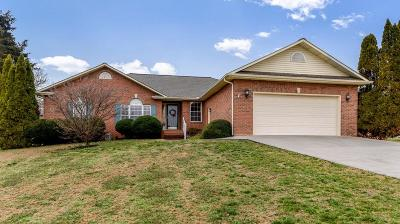 Blount County Single Family Home For Sale: 537 Sweet Briar Drive
