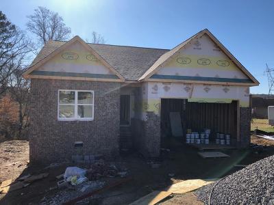 Blount County Single Family Home For Sale: 2402 Utah Beach Drive