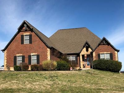 Sevier County Single Family Home For Sale: 1256 Rippling Waters Circle
