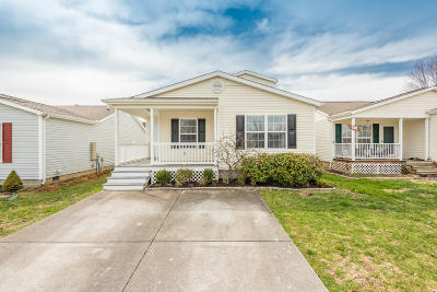 Knoxville Single Family Home For Sale: 1705 Delmonte Way Way