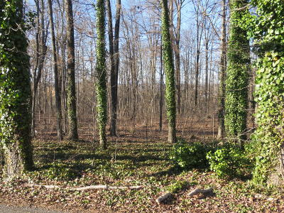 Friendsville, Greenback, Louisville, Maryville, Sevierville, Tallassee, Townsend, Townsend/walland, Vonore, Walland Residential Lots & Land For Sale: Oris Miller Rd