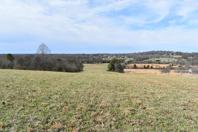Friendsville, Greenback, Louisville, Maryville, Sevierville, Tallassee, Townsend, Townsend/walland, Vonore, Walland Residential Lots & Land For Sale: Best Rd