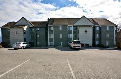Sevier County Condo/Townhouse For Sale: 1260 Ski View Drive #1308