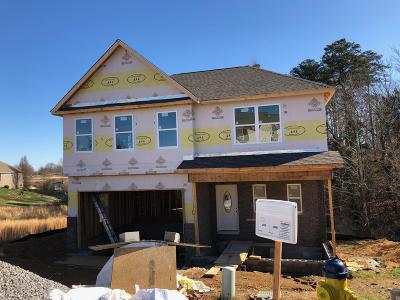 Blount County Single Family Home For Sale: 2403 Utah Beach Drive