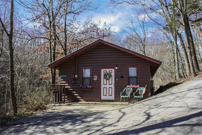 Sevier County Single Family Home For Sale: 2036 Ridge Road #12