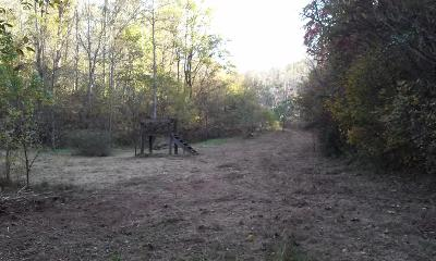 Tazewell Residential Lots & Land For Sale: Straight Creek Rd