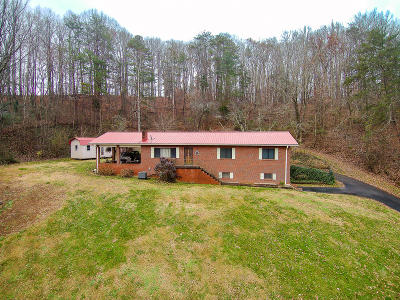 Knoxville Single Family Home For Sale: 422 Tipton Station Rd