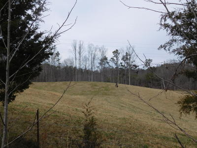 Residential Lots & Land For Sale: Asheville Hwy