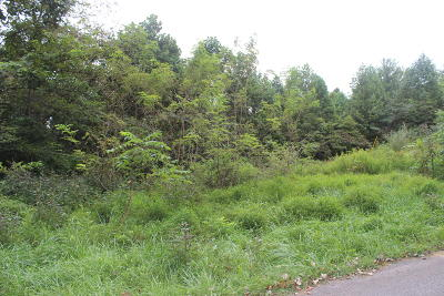Residential Lots & Land For Sale: Camp Galilee Rd