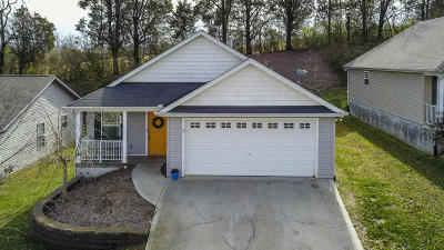 Knoxville Single Family Home For Sale: 10316 Boston Lane