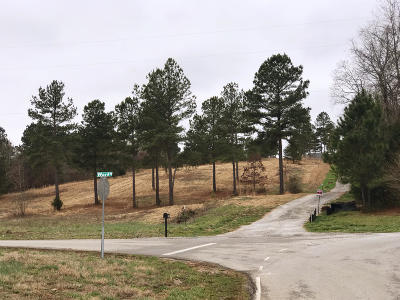 Loudon County Residential Lots & Land For Sale: 150 Ward Rd