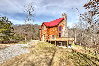 Claiborne County Single Family Home For Sale: 339 Lick Branch Drive