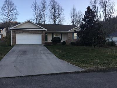 Sevier County Single Family Home For Sale: 3308 Frontier View Drive