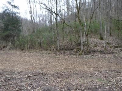 Residential Lots & Land For Sale: 1707 Add Stafford Rd
