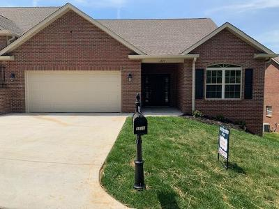 Maryville Single Family Home For Sale: 3875 Spyglass Drive