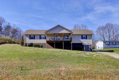 Campbell County Single Family Home For Sale: 272 Cowan Lane