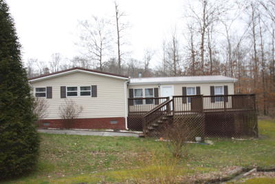 Anderson County Single Family Home For Sale: 154 Cutters Lane