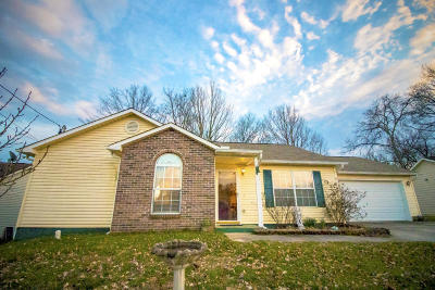 Knoxville Single Family Home For Sale: 7542 Heumsdale Drive