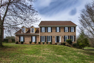Knoxville Single Family Home For Sale: 229 Long Bow Rd