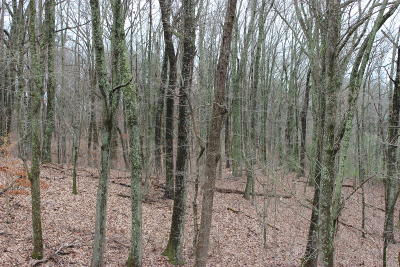Knoxville TN Residential Lots & Land For Sale: $695,000