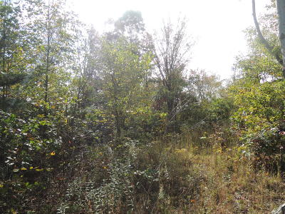 Residential Lots & Land For Sale: Patton Branch Rd