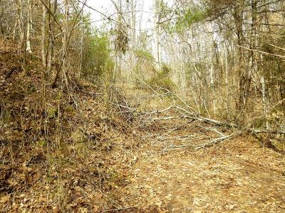 Residential Lots & Land For Sale: 2410 Spence Mountain Loop