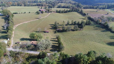 New Tazewell TN Residential Lots & Land For Sale: $450,000